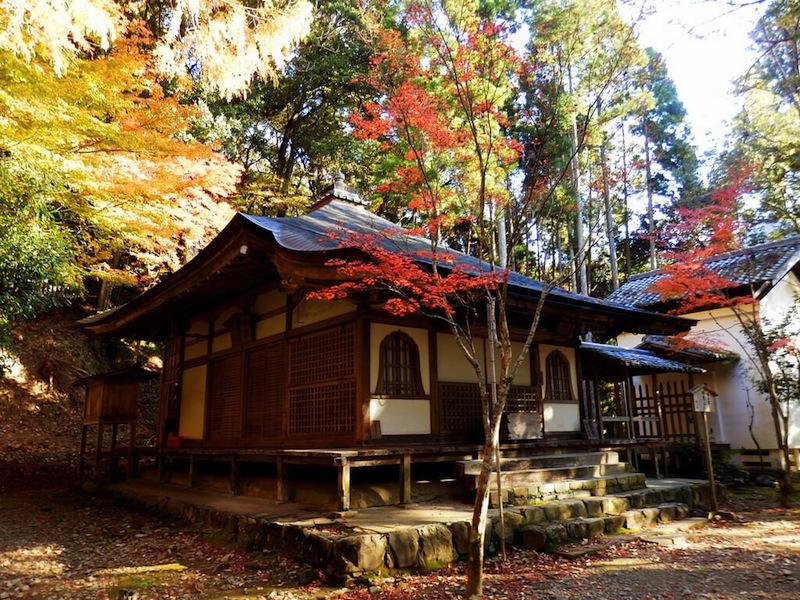秋の高山寺