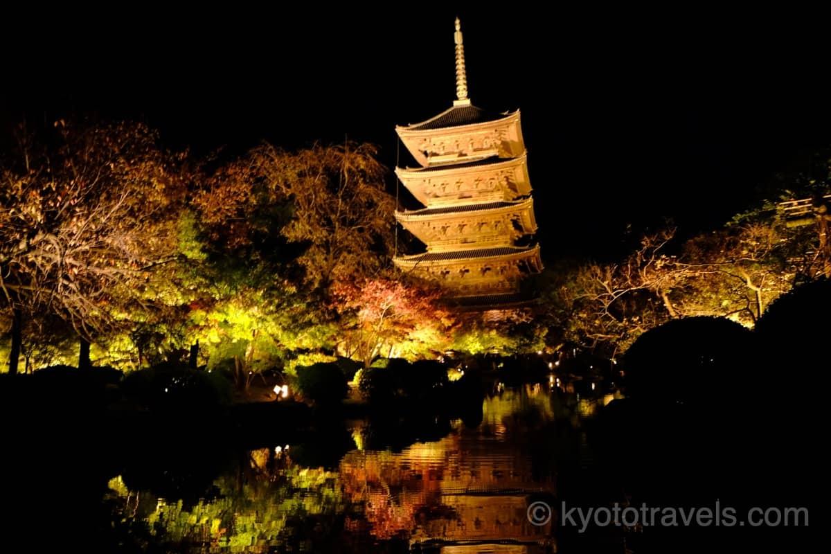 東寺 五重塔の紅葉ライトアップ