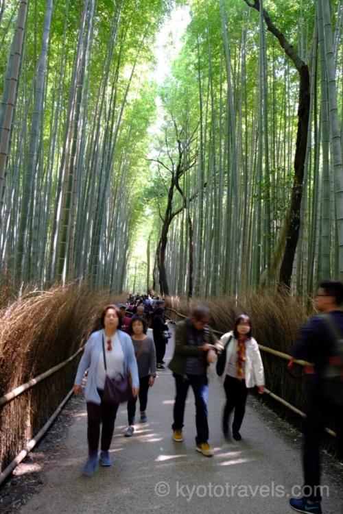 大混雑の嵐山 竹林の小径