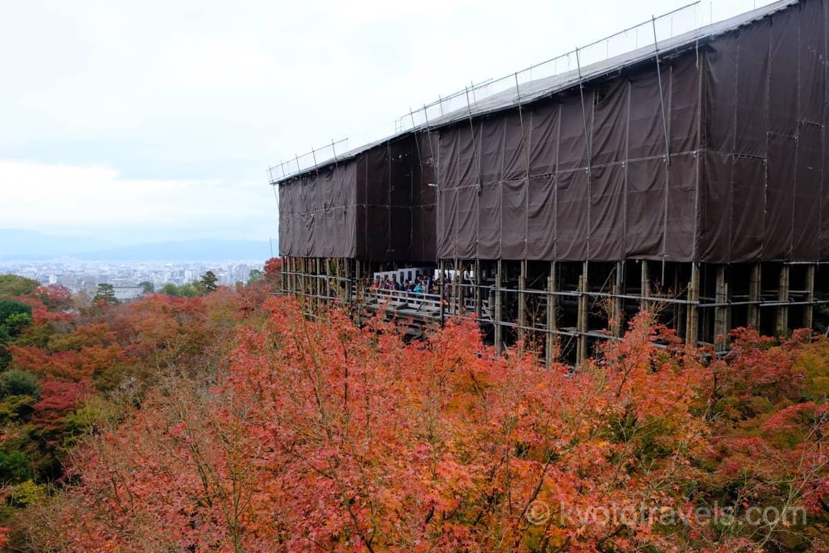 木組みで囲まれた清水寺の本堂