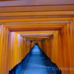 【京都】外国人観光客に人気のスポットを訪ねてみよう!